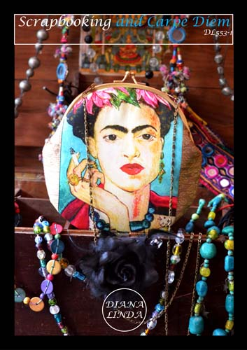 DL553 1 old frame frida